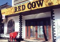В гостях у «Красной коровы»